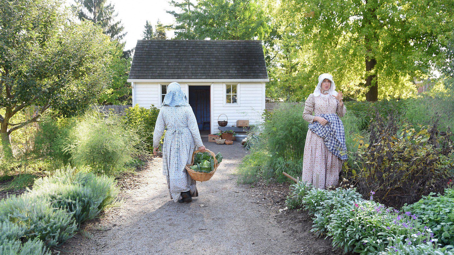 Harvest from the Castle Kitchen Garden